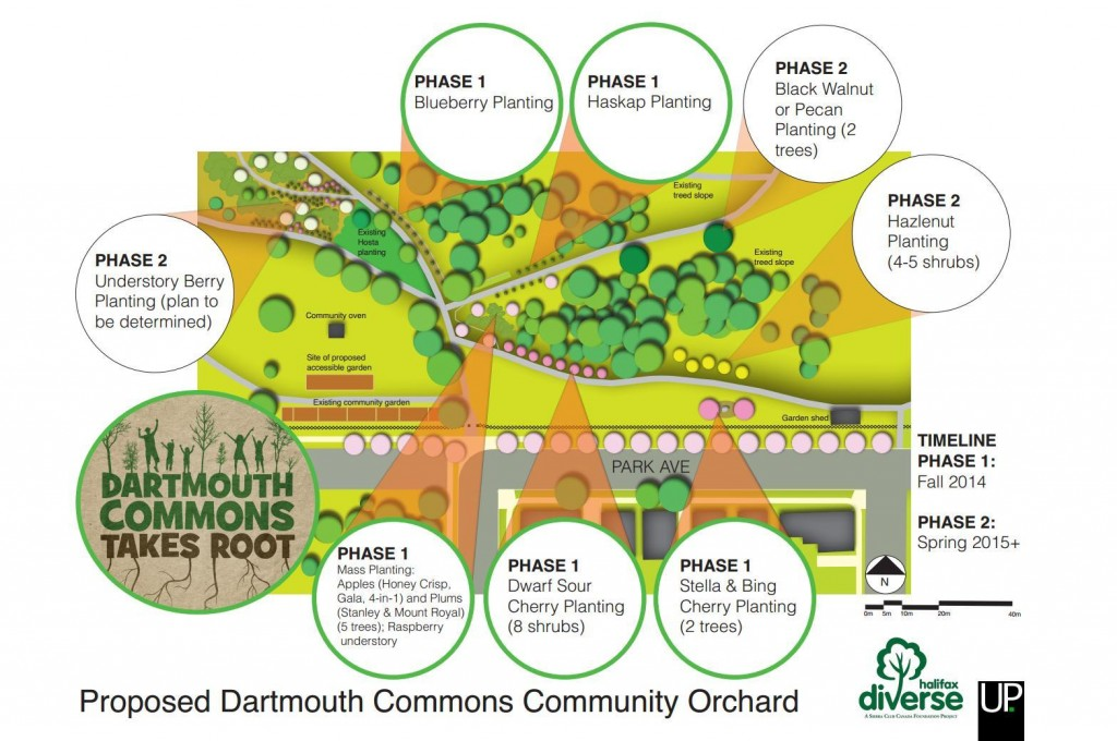 Orchard Plans
