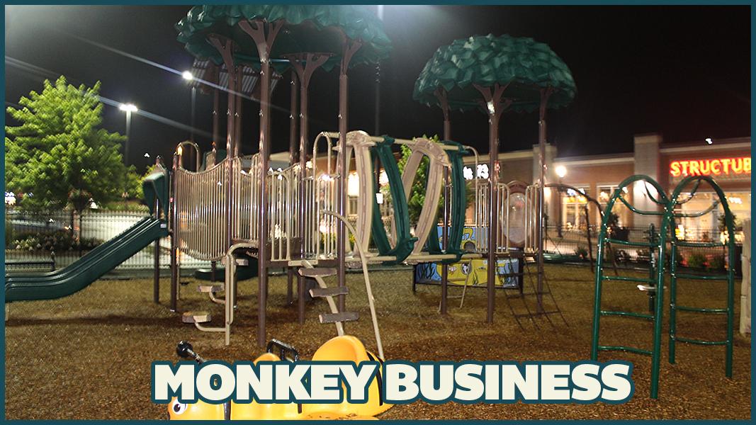 MonkeybusinessImage