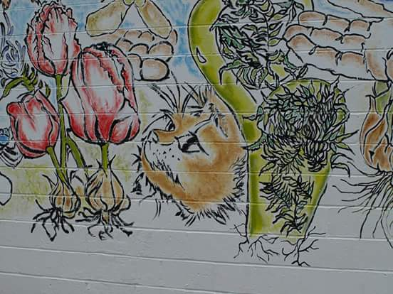 Pekoe is feature in the mural by artist Lee Cripps on the Findlay Wall